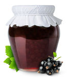 Black currants jam Stock Photography