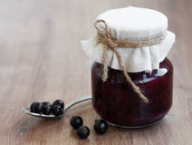 Black currants jam Stock Images
