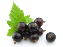 Black currants with leaves. On white background Stock Photography