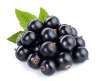 Black currants Royalty Free Stock Photos