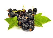 Black currants with leaves Royalty Free Stock Photos