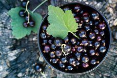 Black currants, top view Stock Photo