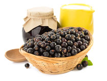 Black currants on white royalty free stock image
