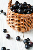 Black currants in a wicker basket Stock Photography