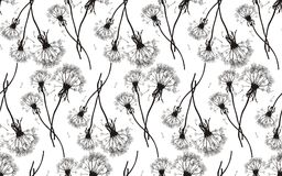 Black dandelions seamless texture Royalty Free Stock Photos