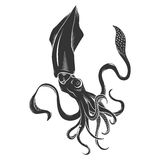 Black danger cartoon squid, calamary characters with curling tentacles swimming underwater,  on white. Tattoo or Royalty Free Stock Image