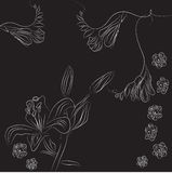 Black decorative background with fresia and narcis Royalty Free Stock Image