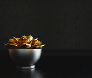 Black decorative pot with gold plant inside on a black background Royalty Free Stock Image