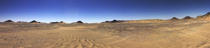 Black desert panorama, Oasis area, Egypt. Royalty Free Stock Photo