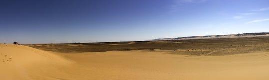 Black desert panorama, Oasis area, Egypt. Royalty Free Stock Photos