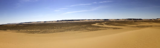 Black desert panorama, Oasis area, Egypt. Royalty Free Stock Images