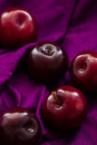 Black Diamond plums (grown in Portugal) in the folds of a purple silk background with copy space Stock Images