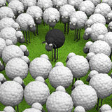 Black different sheep on green grass 3d illustration Royalty Free Stock Images