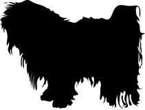 Black dog Silhouette Royalty Free Stock Photo