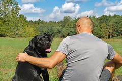 Black dog with boy Stock Photography