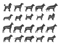 Black dog breeds vector silhouettes isolated on white background vector illustration