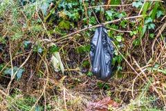 Black dog poo poop bag left in bush. Dog poo poop bag left hanging in a bush, with copyspace royalty free stock image