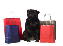 Black dog with shopping bags. Isolated on white royalty free stock photo