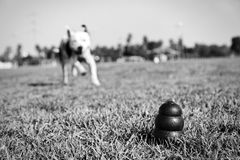 Running to Dog Toy on Park Grass - Monochrome. A black dog toy at the front of the frame, with a blurred Pitbull running towards it from the distance Royalty Free Stock Photos