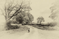 Black dog walking along a country lane Stock Photo