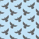 Black dove seamless pattern. Pigeons flying background. Birds in Royalty Free Stock Photo