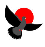 Black Dove symbol of sadness and mourning. Flying black Bird on Stock Photos