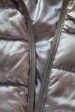 Black down jacket Royalty Free Stock Images
