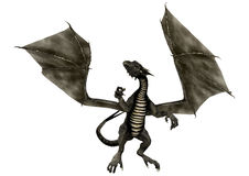 Black Dragon Stock Image