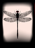 Black Dragonfly. Dragonfly illustration backlit with a ghostly/halloween feel Stock Images