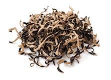 Black dried fungi Stock Photos