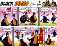 Black Ducks Comic Strip episode 11 Stock Photos