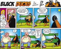 Black Ducks Comic Strip episode 13 Stock Image