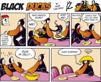 Black Ducks Comic Strip episode 15 Royalty Free Stock Photos