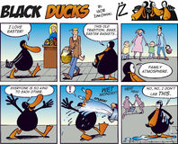 Black Ducks Comic Strip episode 41. Comic story illustrations with funny adventures of black ducks Royalty Free Stock Images