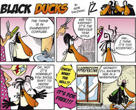 Black Ducks Comic Strip episode 9 Stock Photography