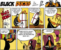 Black Ducks Comics episode 74 Royalty Free Stock Photos