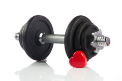Black dumbbell  on a white Royalty Free Stock Image