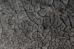 Black earth with large cracks for background or texture.  stock image