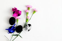 black Easter eggs and pink carnation flowers on a white background top view. royalty free stock photo