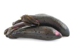 Black eggplants Stock Images