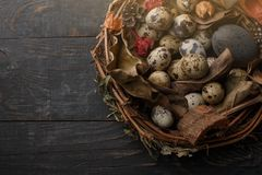 Black eggs in a nest of dry branches on a black board. Easter style royalty free stock images