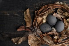 Black eggs in a nest of dry branches on a black board. Easter style royalty free stock photos