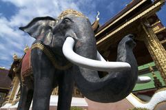 Black Elephant Statue in Chiang Mai`s Wat Saen Muang Ma Luang stock photos