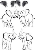 Black elephant, trunk up and down, wild animals. Black elephants with trunk up and down, pal, wild animals Royalty Free Stock Images