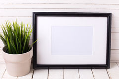 Black empty frame and grass in pot on white wooden background. Royalty Free Stock Photos