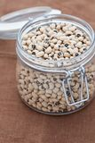 Black eye beans in a large glass jar Royalty Free Stock Photography
