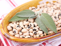 Black Eye Beans royalty free stock images