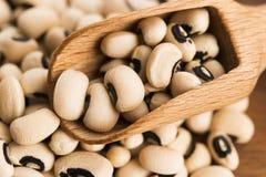 Black eye beans Royalty Free Stock Image