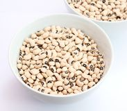 Black Eye peas Stock Image