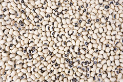 Black Eyed Beans Stock Photo